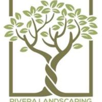 Local Lawn care service near me in Wauconda, IL, 60084
