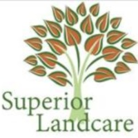 Local Lawn care service near me in Haslet, TX, 76052
