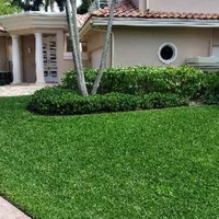 Local Lawn care service near me in North Fort Lauderdale, FL, 33068