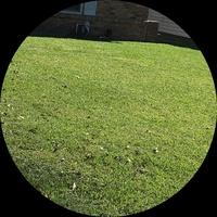 local-lawn-cutting-services-in-La Porte-TX