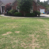 Local Lawn care service near me in Columbia , SC, 29210