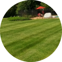 Local Lawn care service near me in Mc Henry, IL, 60051