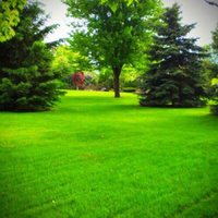 Local Lawn care service near me in Plymouth, MN, 55442