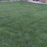 Local Lawn care service near me in St. Louis, MO, 63125