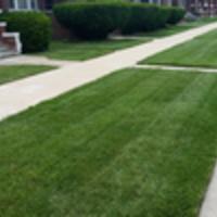Local Lawn care service near me in Chicago, IL, 60616