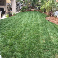 Local Lawn care service near me in El Dorado Hills, CA, 95762