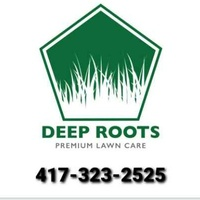 the-yard-cutting-businesses-in-Springfield-MO