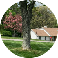 affordable-landscaping-maintenance-services-in-Portland-TN