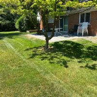 lawn-maintenance-in-Southfield-MI