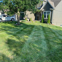 the-yard-cutting-businesses-in-Blue Springs-MO