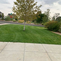 grass-cutting-businesses-in-Boulder-CO