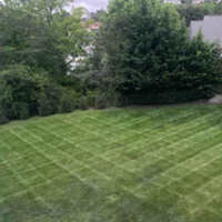 the-yard-cutting-businesses-in-Asheville-NC