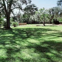 local-lawn-and-landscape-maintenance-services-near-me-in-Lake Charles-LA
