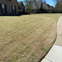 local-lawn-maintenance-contractors-in-Memphis-TN