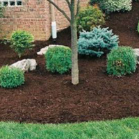 lawn-maintenance-in-Indianapolis-IN