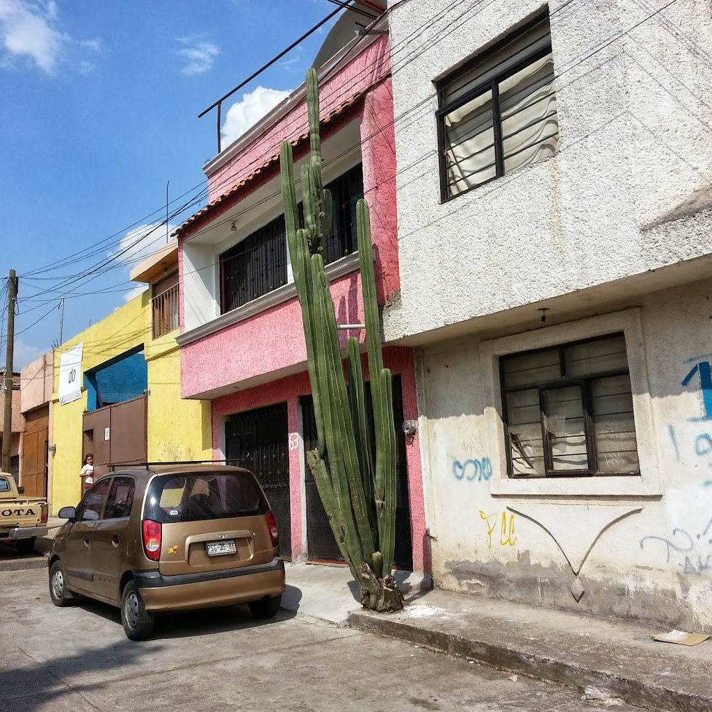 first-week-living-in-mexico