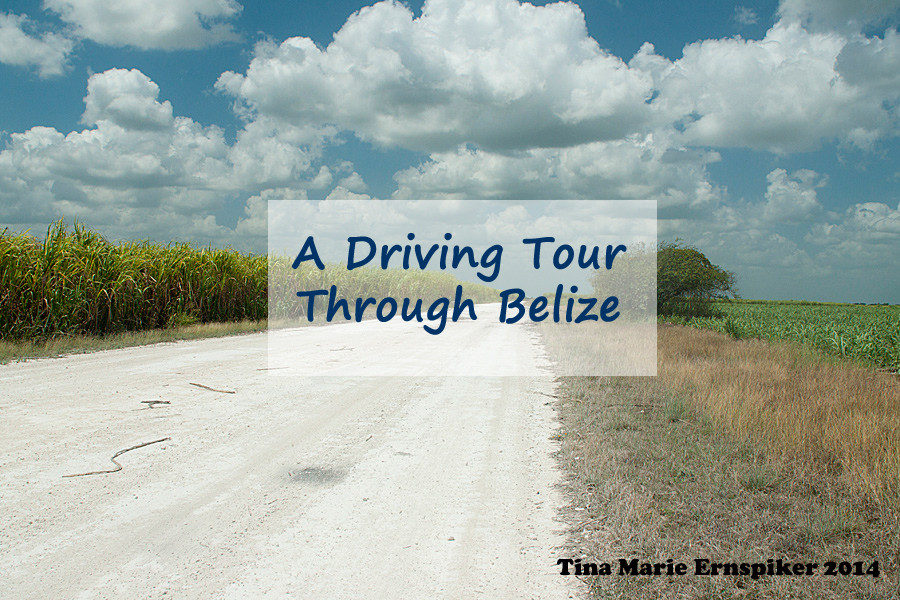 driving-through-belize