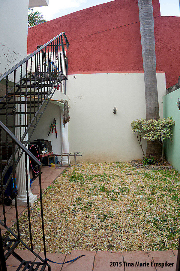 rent-home-in-Mexico