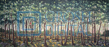 Forest 2 Projected Backdrop for Big Fish, Brigadoon, Forest, Into the Woods, Peter Pan, Seven Brides for Seven Brothers, Shrek, Wizard of Oz