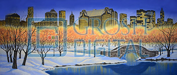 Central Park in Winter Projected Backdrop for