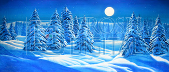 Night Snow Landscape Projected Backdrop for A Christmas Carol, Elf the Musical, Forest, Frozen, Nutcracker, Snows
