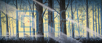 Fern Forest Projected Backdrop for Addams Family, Alice in Wonderland, Beauty and the Beast, Big Fish, Cinderella, Forest, Giselle, Into the Woods, Lion King, Madagascar, Peter Pan, Shrek, Sleeping Beauty, Wizard of Oz