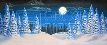 Night Snow Landscape 3 Projected Backdrop for A Christmas Carol, Frozen, Holiday, Nutcracker, Snows