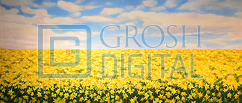 Daffodil Field Projected Backdrop for