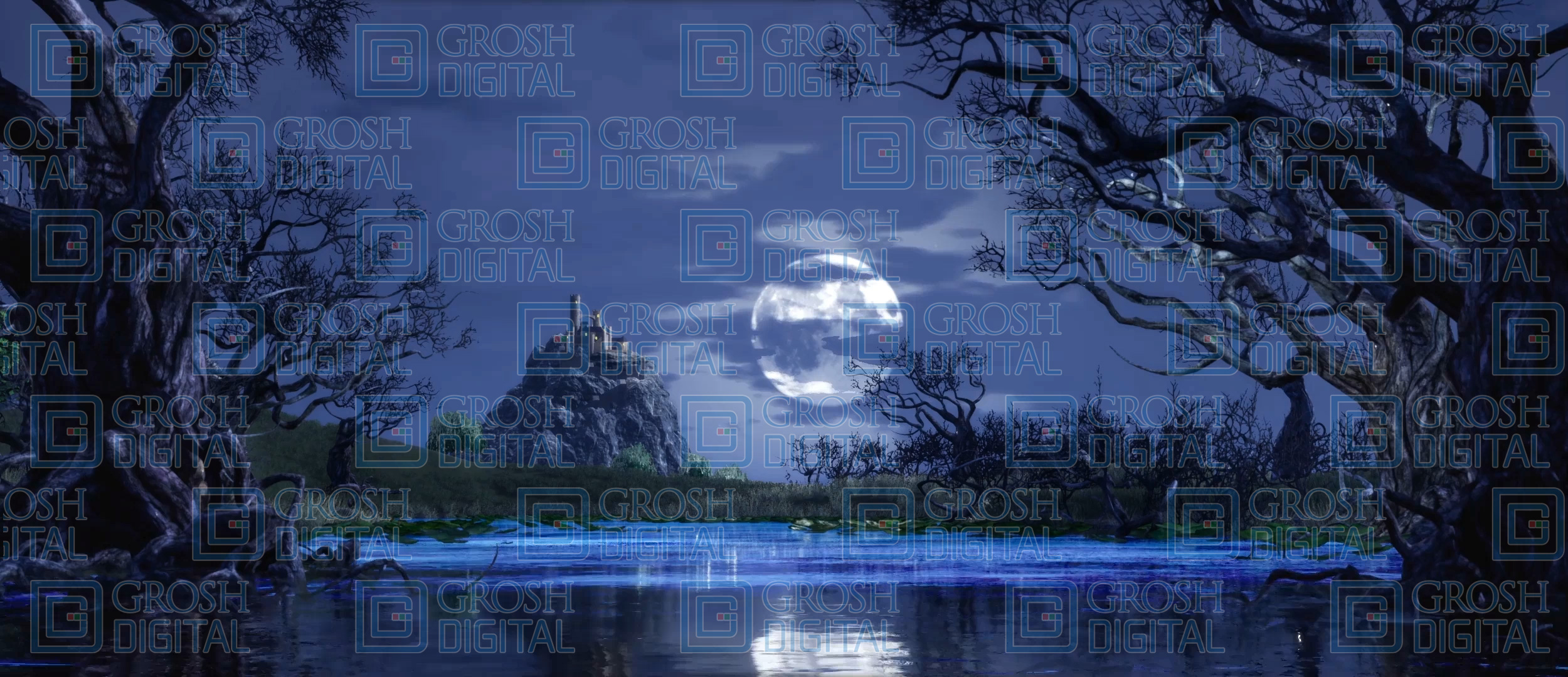 Swan Lake Projected Backdrop for Beauty and the Beast, Castles, Cinderella, Frozen, Giselle, Into the Woods, Landscapes