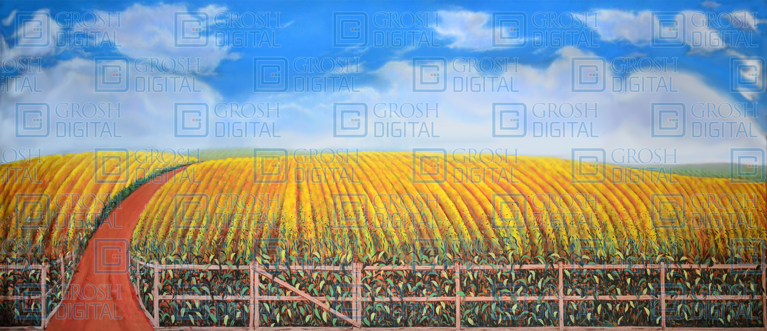 Cornfield Projected Backdrop for Landscapes, Oklahoma, Seven Brides for Seven Brothers, Wizard of Oz