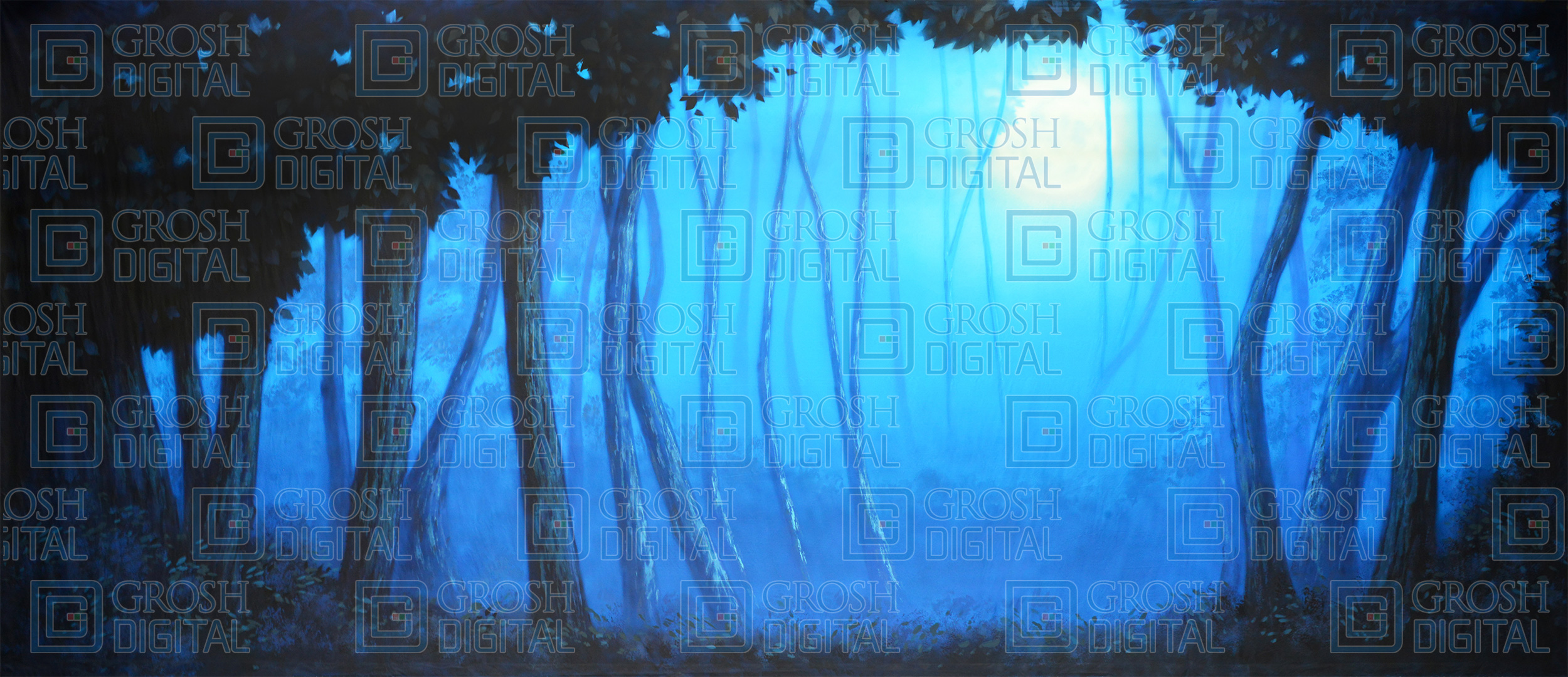 Blue Night Forest Projected Backdrop for Addams Family, Beauty and the Beast, Big Fish, Cinderella, Forest, Giselle, Into the Woods, Lion King, Madagascar, Peter Pan, Shrek, Sleeping Beauty, Wizard of Oz