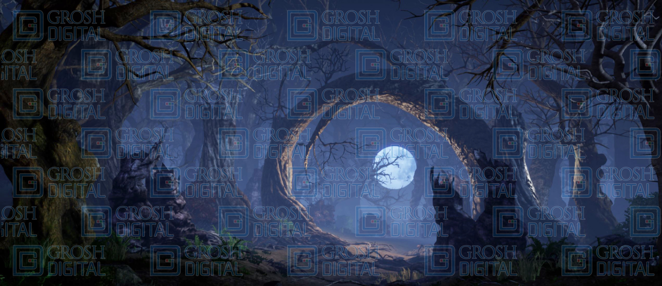 Spooky Woods Projected Backdrop for Dance, Forest, Giselle, Into the Woods