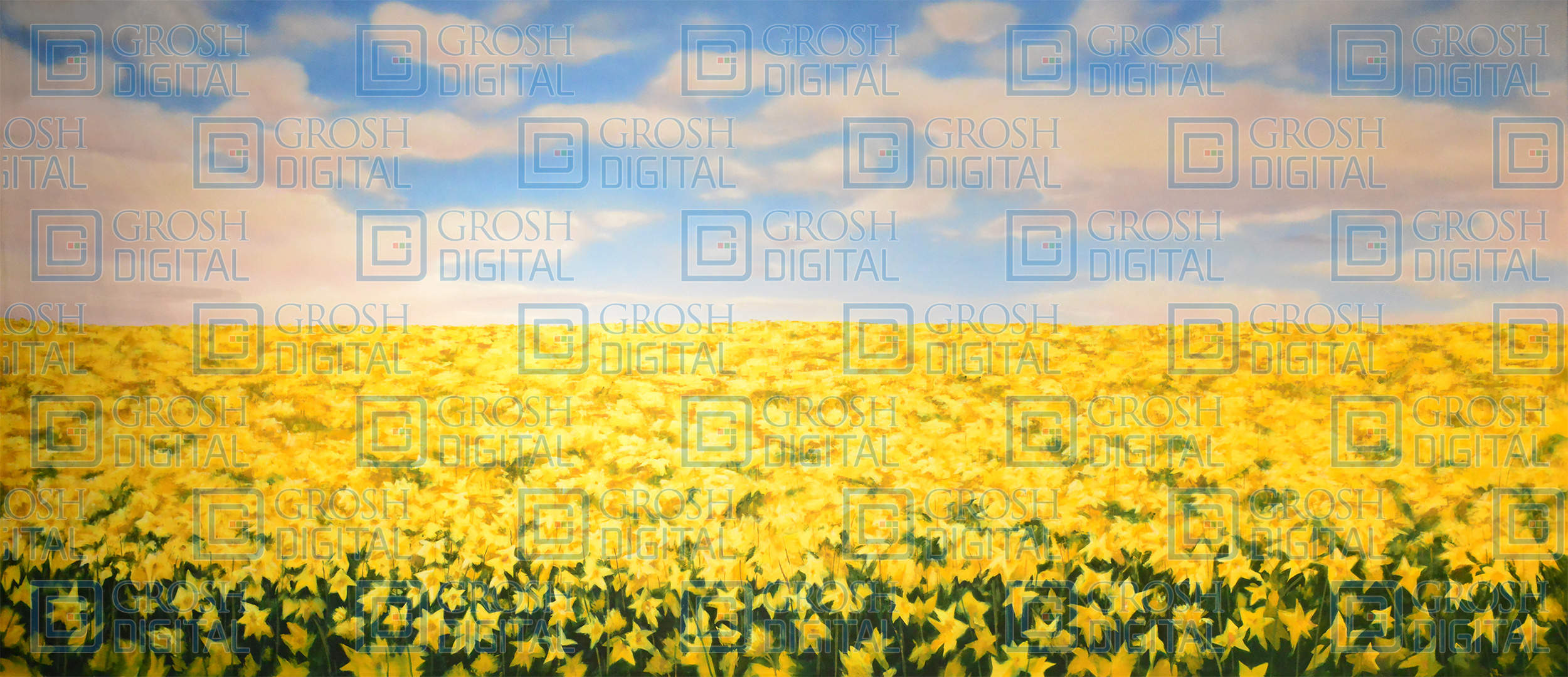 Daffodil Field Projected Backdrop for Beauty and the Beast, Big Fish, Cinderella, Gardens, Landscapes, Mary Poppins, Seussical, Shrek, Wizard of Oz