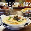 SKYBOKX109 Logo