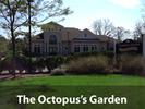 Octopus's Garden Logo