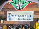 Damiana Kitchen at Fridas Logo