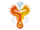 Seahorses Fish & Chicken Market Logo