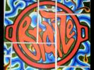 BraiZe Logo