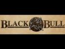 400px x 300px %e2%80%93 groupraise black bull