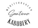 Mediterranean Santour Kabobery Logo