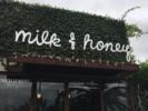 Milk and Honey Logo