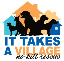 Itv logo 2017 web