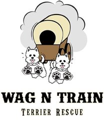 Wag n train profile pic