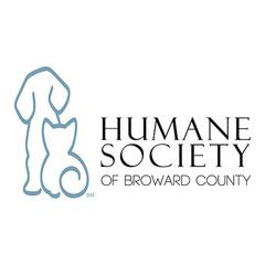 Hsbc logo 500x square profile picture