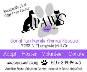 Paws shelter logo