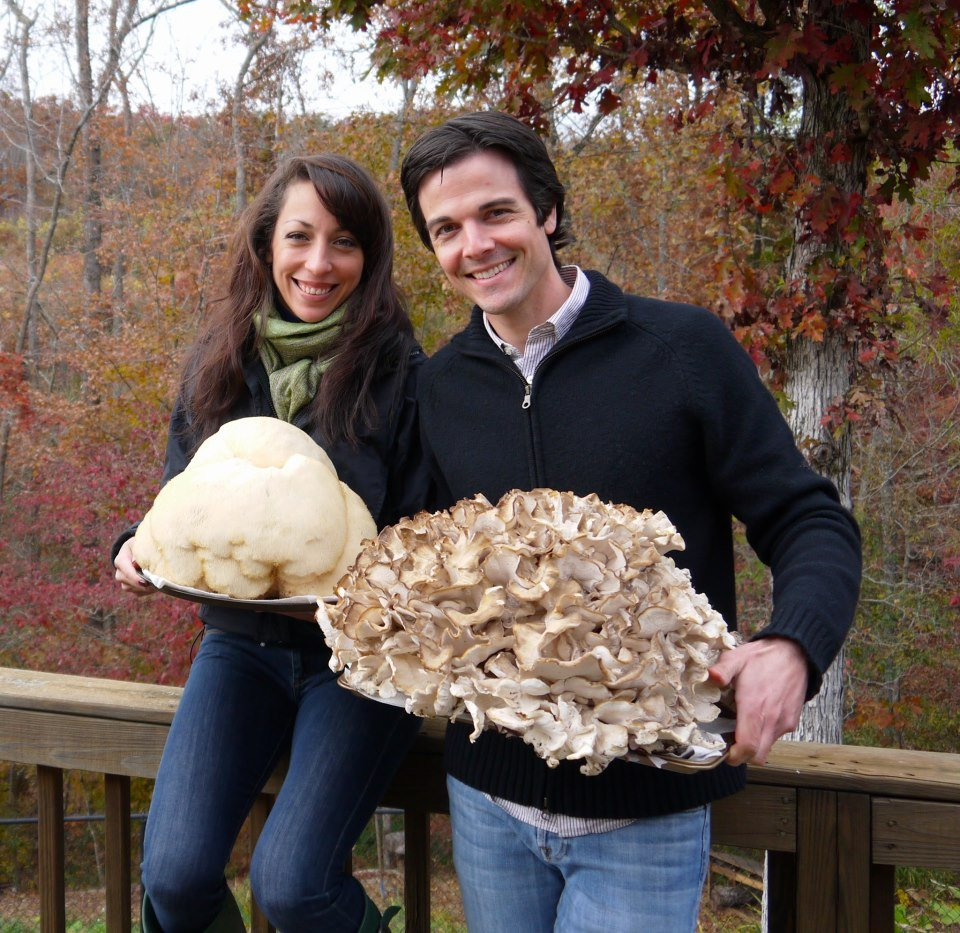 Two prized edible and medicinal mushrooms in the world, both weighing over 20 pounds: lion's mane (left) and maitake (right). Both found on a fall foraging excursion.