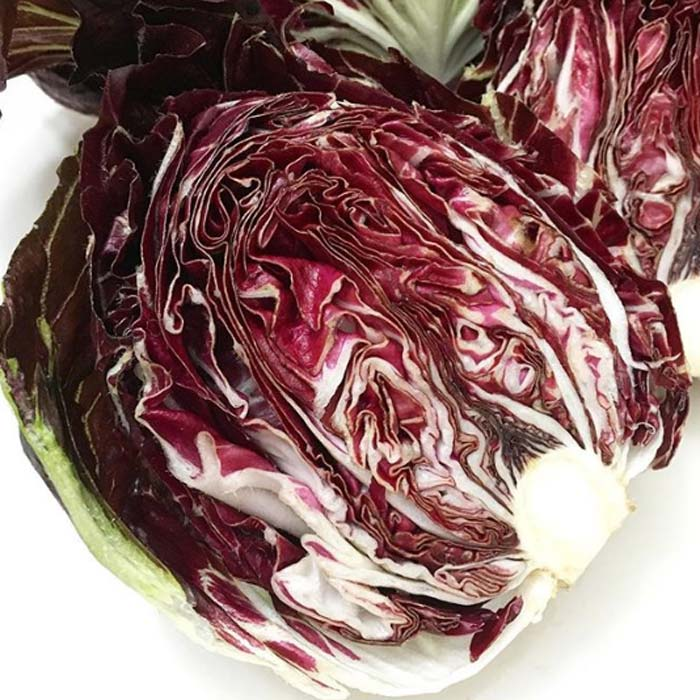 'Red Orchid' radicchio, a variety of chicory, harvested in winter 2017. These beautiful, nutrient-rich greens were added to a mixed green salad with nutritional yeast and a balsamic-olive oil dressing. | Easiest Garden Plants to Grow in the Fall and Winter by GrowJourney