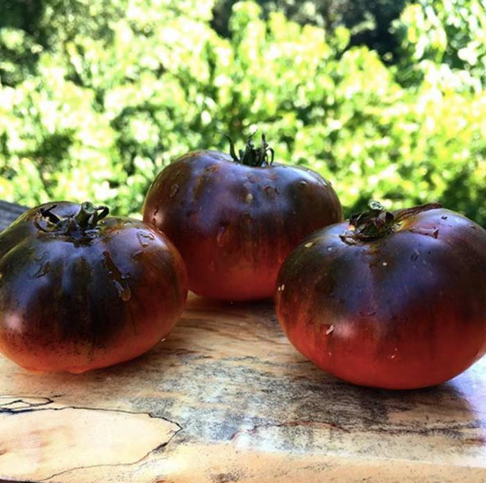 We want you to grow piles of gorgeous heirloom potted tomatoes next summer. These are 'Black Beauties'. How to grow potted tomatoes by GrowJourney