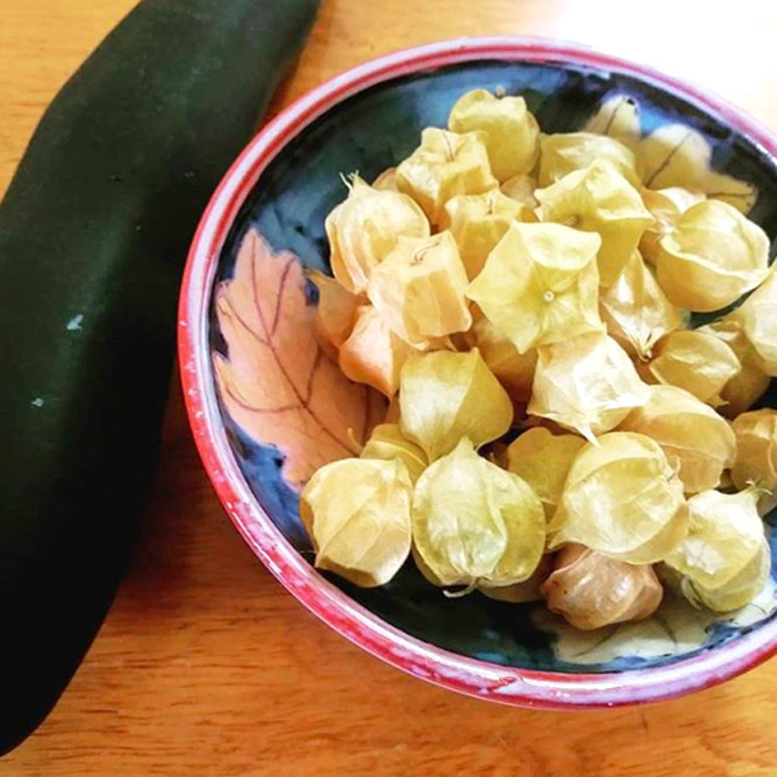 Ground cherries (one of our personal faves), a delicious heirloom summer fruit, grown by Valerie. These taste like a cross between a tomato and a pineapple.