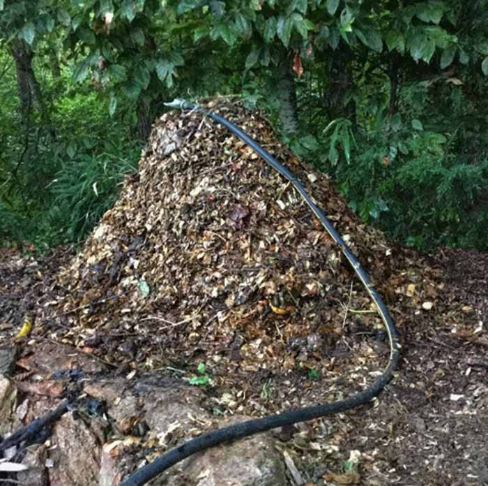We recommend fighting biology with biology. This is the start of a hot compost pile using the Berkeley Composting Method (developed by Berkeley University). The pile is turned every 48 hours to prevent it from going aerobic or getting too hot. The internal temperatures hit 140+ degrees F for over 10 days, pathogenic microorganisms and seeds are